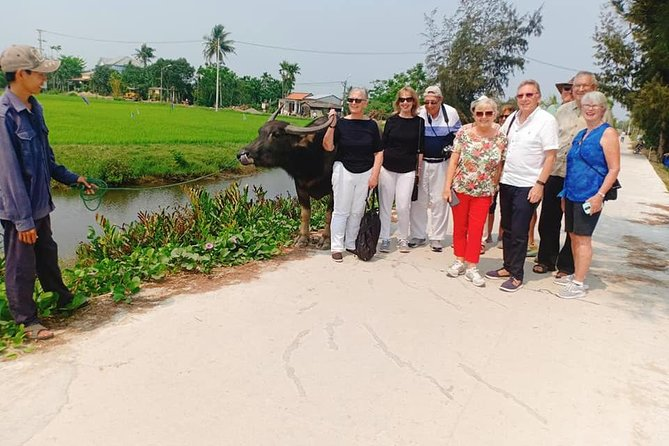 Private Shore Excursion From Tien Sa Port to Experience Hoi an Countryside Tour photo 2
