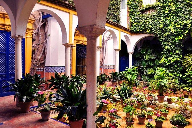 Santa Cruz Guided Walking Tour in Seville