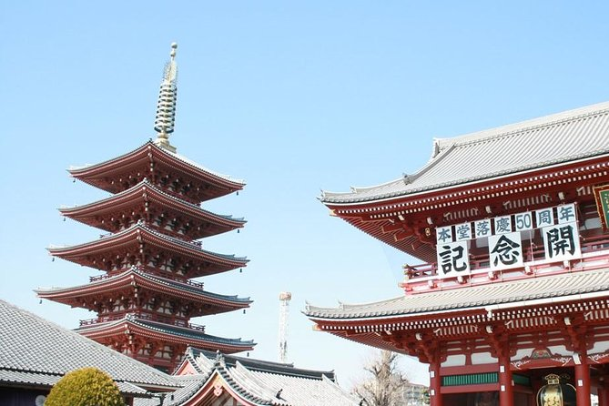 Tokyo private tour using subway: Discover traditional and modern Japan!
