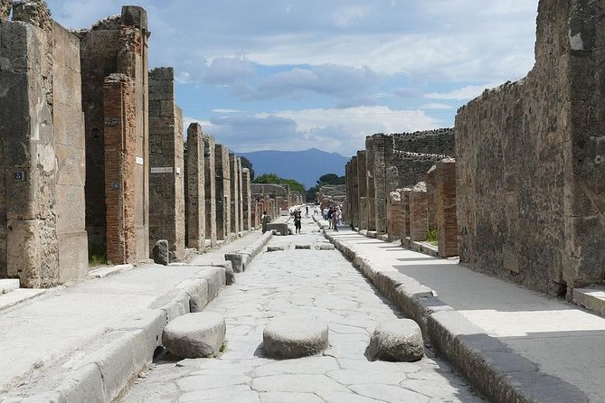 Timeless Half day Walking Tour in the Roman Pompeii with a Private & Local Guide