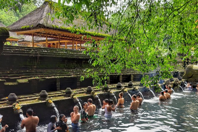 Ubud Culture Private One Day Tour