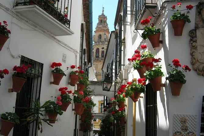 Private Tour: Cordoba Walking Tour with Skip-the-line Tickets