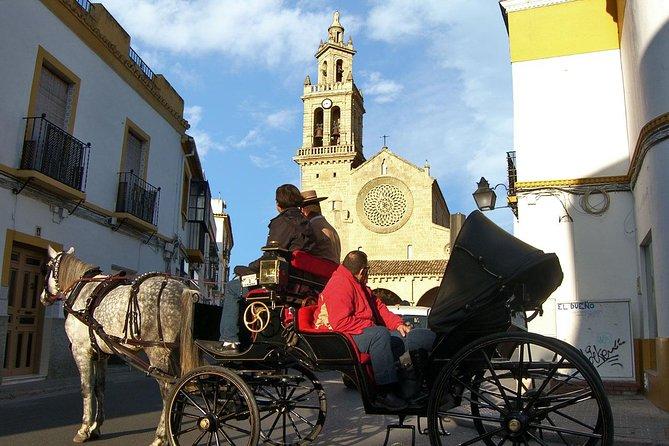 Private Tour: Horse-Drawn Carriage Ride Through Cordoba