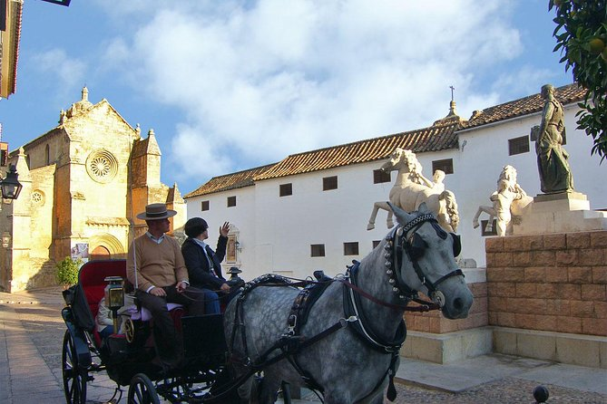 Private Tour: Horse-Drawn Carriage Ride Through Cordoba