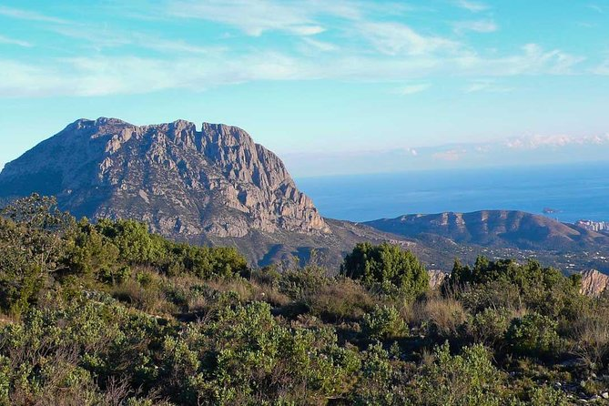 Costa Blanca Guided Walk photo 7