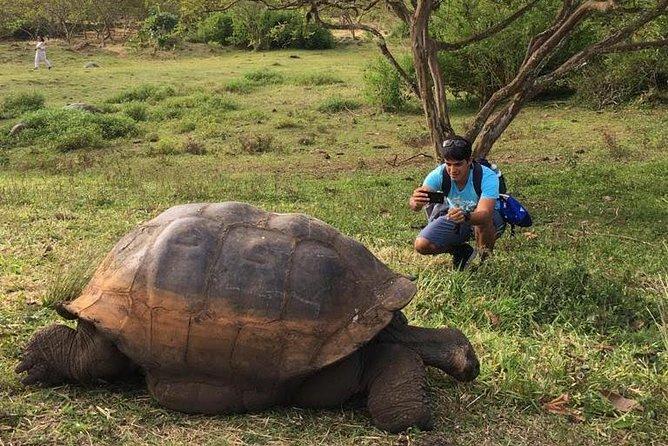 5-Day Trip in Santa Cruz Galápagos Land-based/Low budget