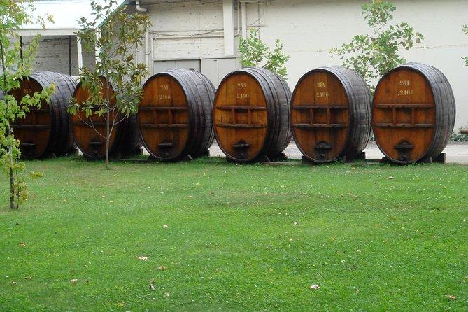 Santiago: 2 days program, City tour with wine taste & Sea cities.