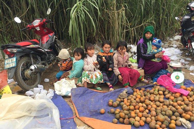 5-Day Adventure To North Vietnam: Ba Be Lake And Ha Giang Loop