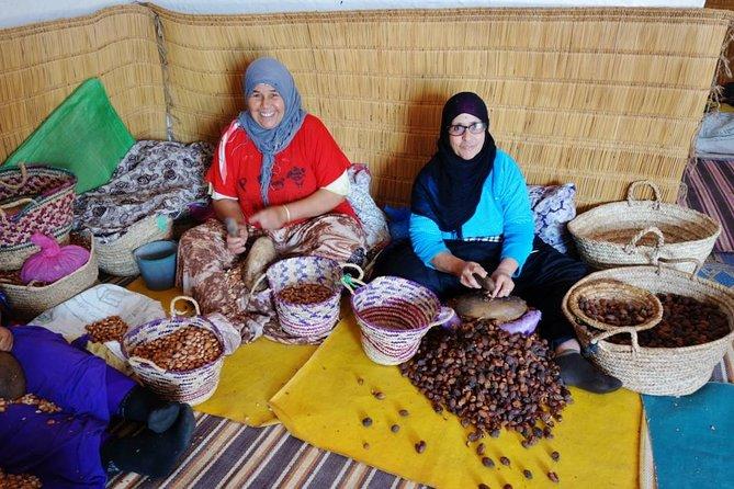 Argan Forest, tea time at a Berbers family & Visit of an Argan cooperative.