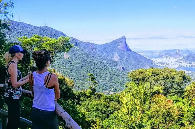 Half-day Tijuca Forest Family Hike