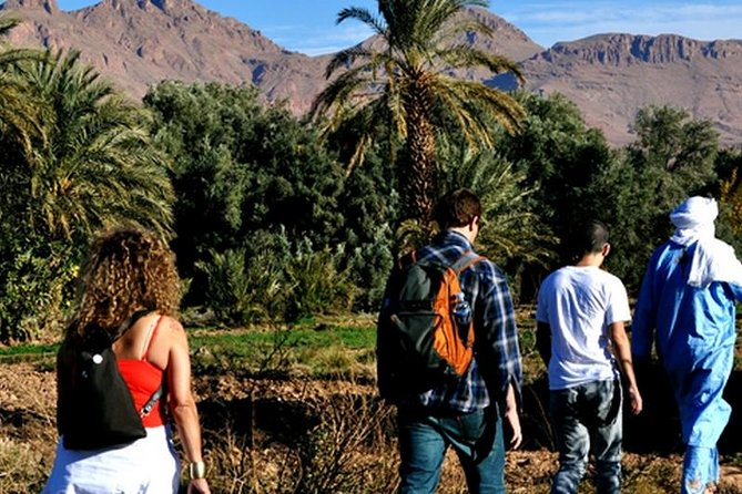 Cities, Mountains, and Sahara Morocco Tour