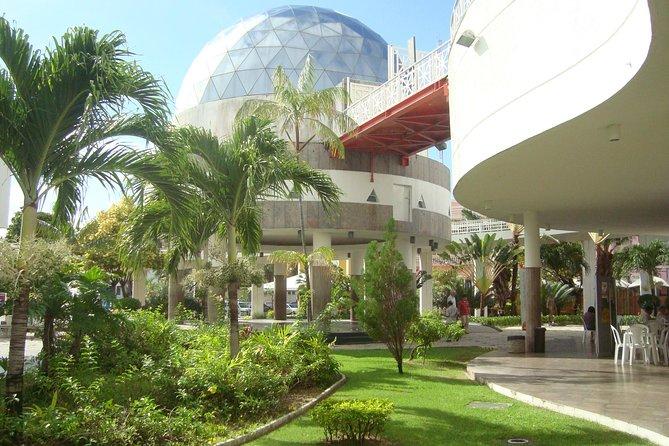 Rubens de Azevedo Planetarium Admission Ticket