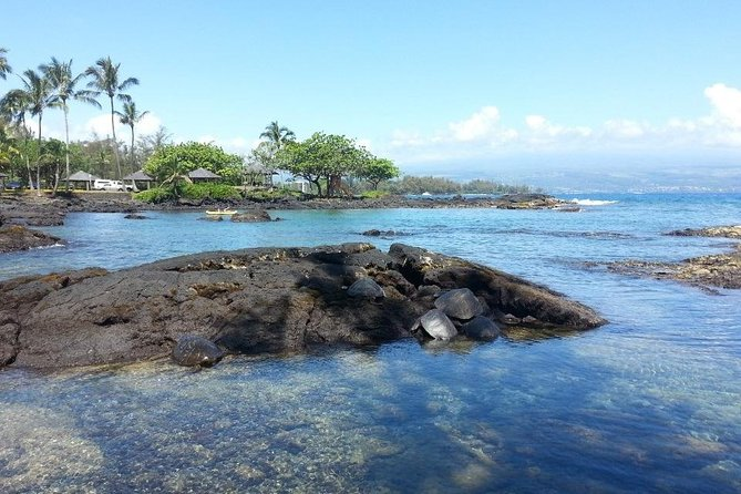 Volcano Adventure Tour & Waterfall - Shore Excursion from Hilo Harbor