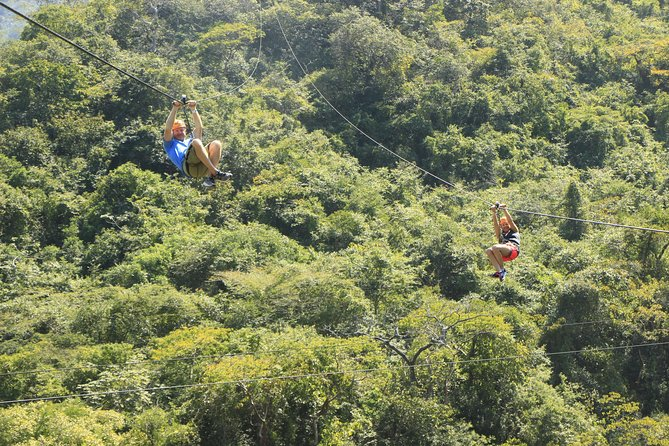 Canopy River Zipline Tour and Mule Ride photo 6