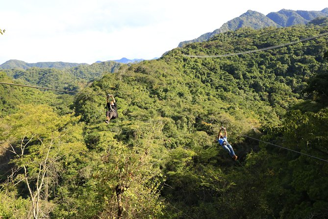 Canopy River Zipline Tour and Mule Ride photo 3