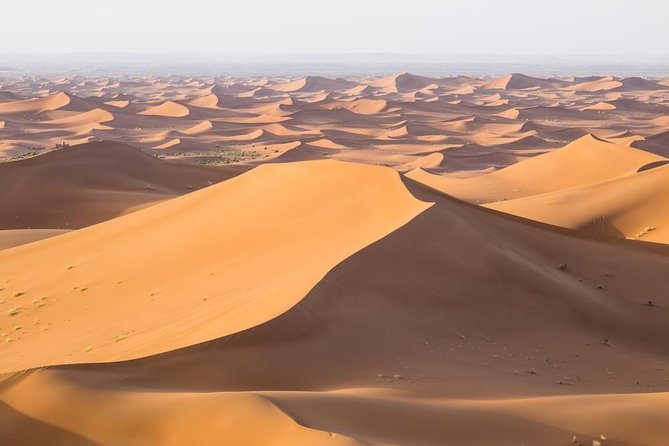 Desert tour from Fes to Marrakech 4 days