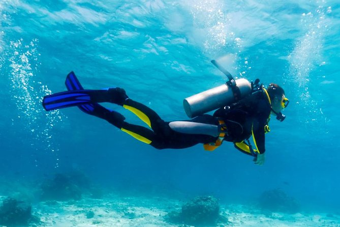Professional Scuba Diving Full Day Trip – Hurghada