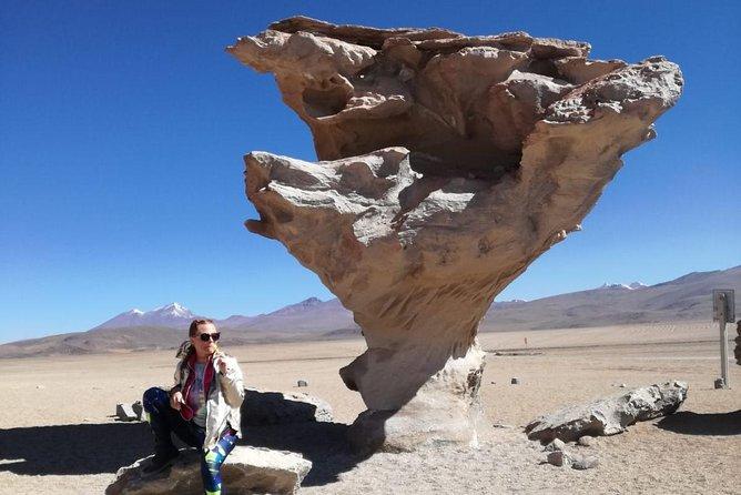 3 Dias 2 Noites Uyuni Salt Flats por Ônibus de La Paz