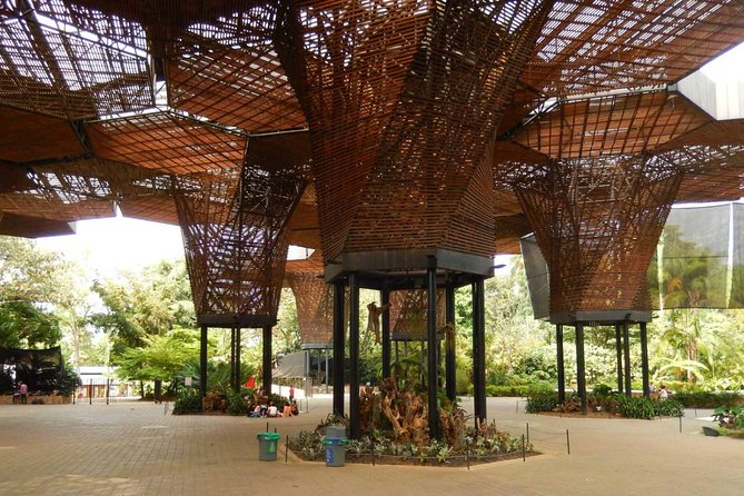 Botanical Gardens and Medellin City walking Tour