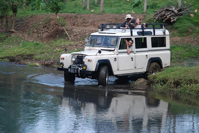 Amazing 4 WD Jungle Jeep Adventure Tours