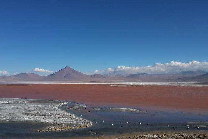 Private Day Trip to Laguna Colorada from Uyuni with Bilingüal Guide, Uyuni, BOLIVIA