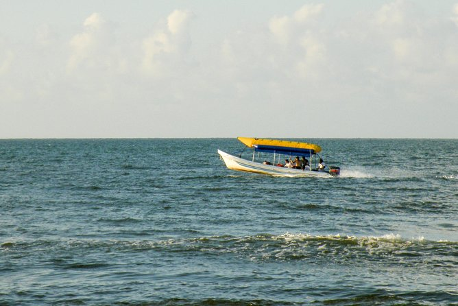 Tela Beach Day Tour from San Pedro Sula