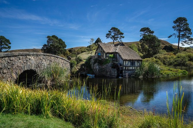 5-Day Best of the North Island Tour from Auckland