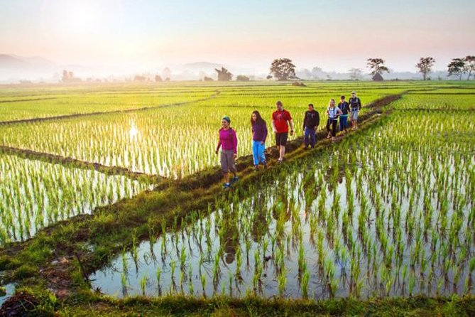 Bali Sambangan Waterfall, Rice Field, Secret Garden Tour