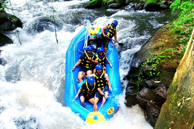 Telaga Waja White Water Rafting and Ubud Art Village Tour