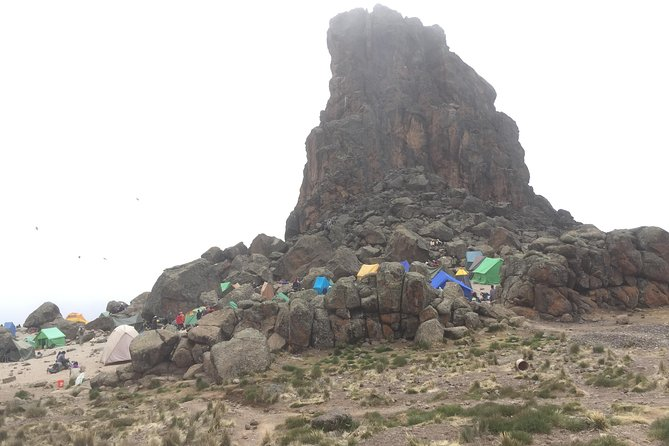 8 Days Lemosho Route, Kilimanjaro Climb