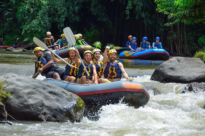 Private Tour in Bali: Bali's Best Water Rafting and Jungle Swing Tour
