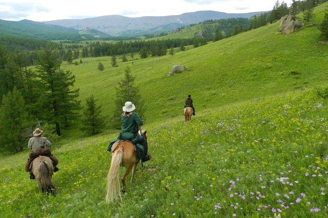 1 day Genghis Khan Statue & Terelj National Park tour