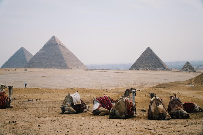 Private Tour to Egyptian Museum, Giza Pyramids & The Great Sphinx