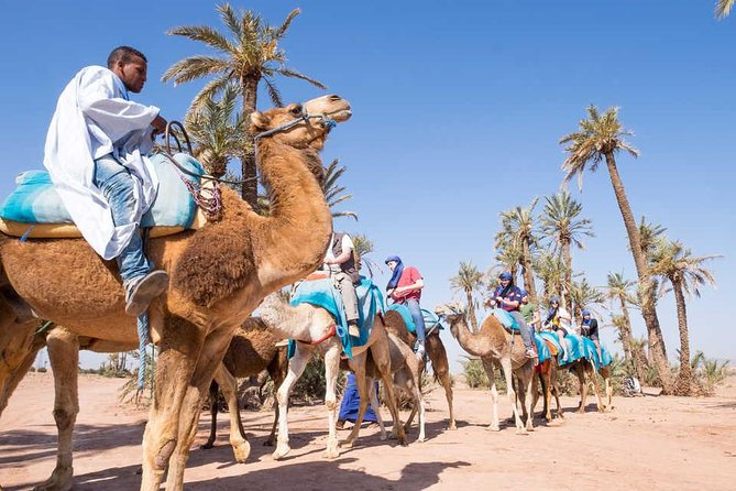 Package of Camel ride & Quad Bikes & Hammam with Massage