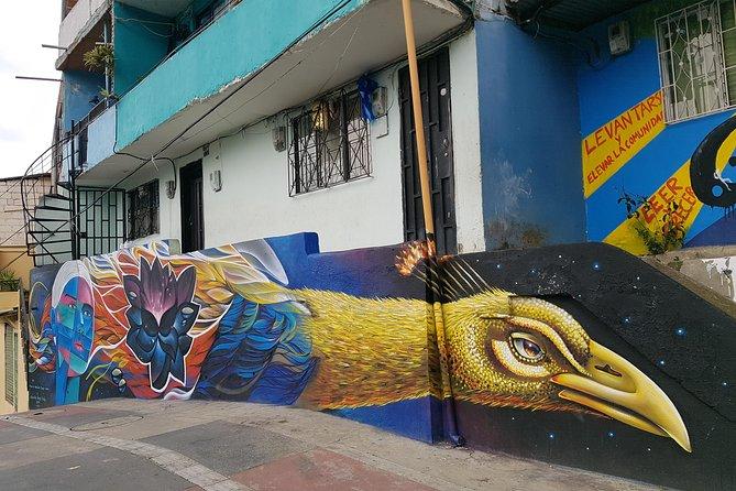 Private Half-Day Medellín Graffiti Tour Including Metrocable