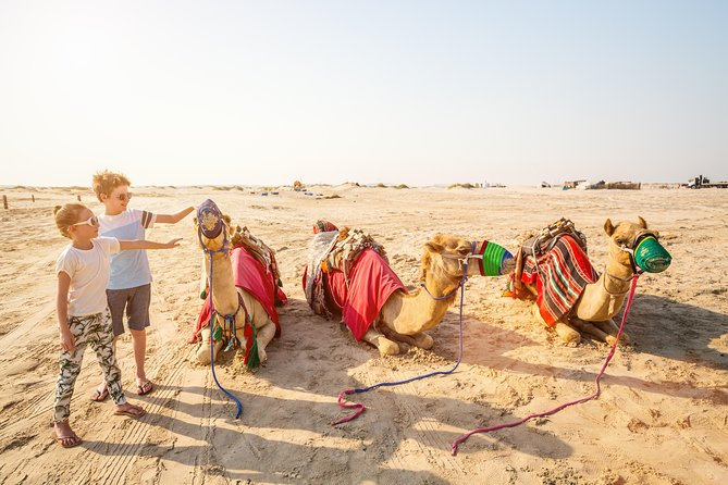 Doha Safari: Bash The Dunes, Camel Ride and Sandboarding