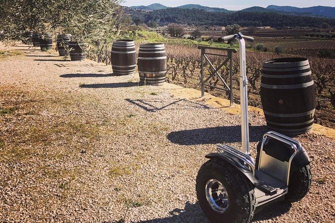 Vineyard visit in Gyropode, visit of Cave & Tasting Wines of Bandol