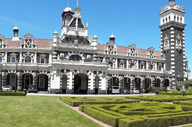 Dunedin City Highlights, Otago Peninsula Scenery & Albatross Guided Tour
