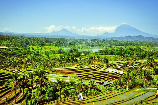 Private Full Day-Tour: Jatiluwih Rice Terrace and Tanah Lot Tour