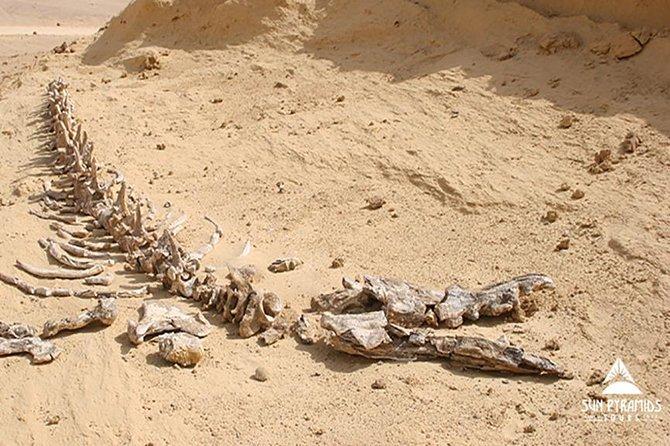 Ganztägige Private Sightseeing-Tour von El Faiyum aus Kairo