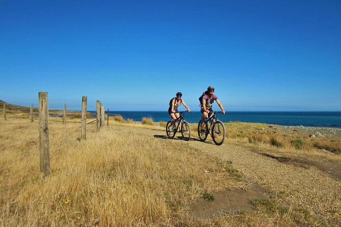 Remutaka Highlights Package Cycle Tour