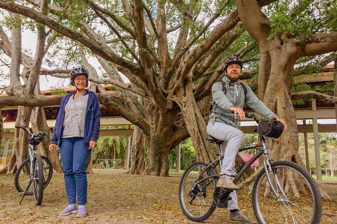 Excursão de bicicleta no Parque do Ibirapuera