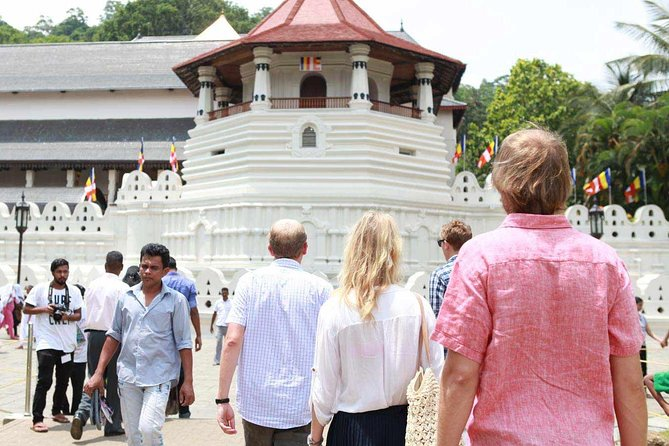Private Kandy Tour by Air-Conditioned Car: Do it All in One Day