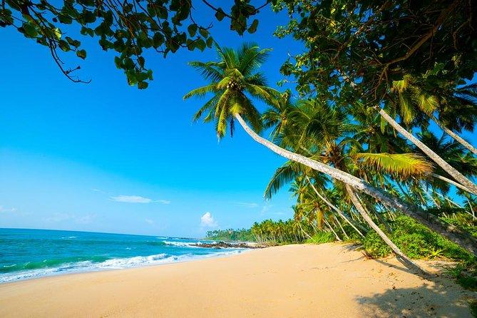 Sri Lanka tours package in 9 Days by Aaliya Tours (Amazing Sri Lanka)