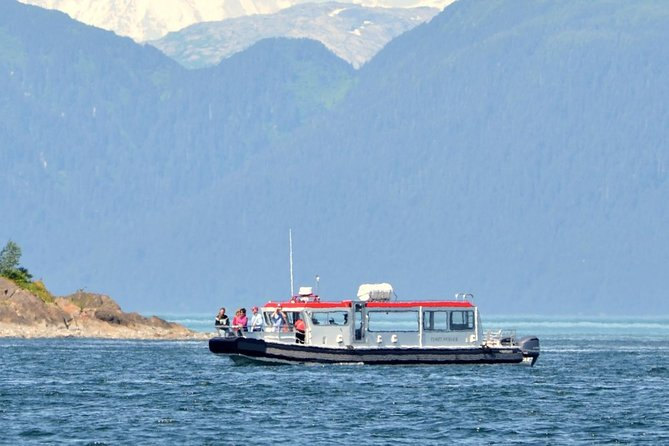 Best Whale Watching Boat in Alaska