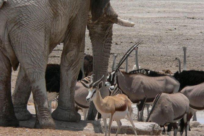 - Windhoek, NAMIBIA