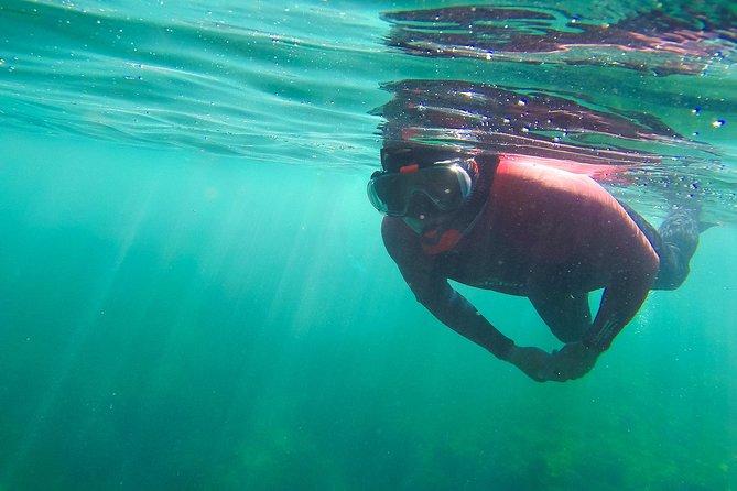 Mergulho com snorkel