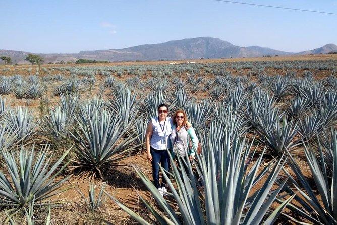 Tequila Tour , Ruta del Tequila