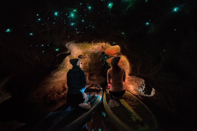 Rotorua Twilight Stand-Up Paddleboard Tour and Glow Worm Experience