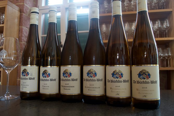 Personal wine tours in the heart of Germany from Frankfurt region - Mainz photo 4